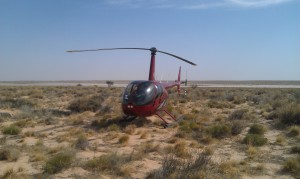 Red R44